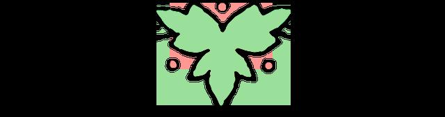 Cenefa