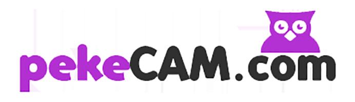 PekeCam. WebCam en las aulas